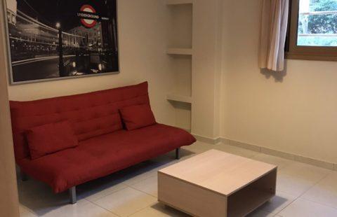Apartment 50 m2 (SOLD)